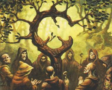 Druids In The Forest, Celtic And Druids