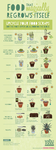 I got this one off Pinterest. so if you want to check out where this and other awesome eco friendly ideas are kept, go to my Pinterest page.