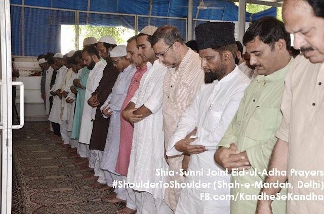 शिया सुन्नी जॉइंट नमाज़ के पीछे अमीक जामेई