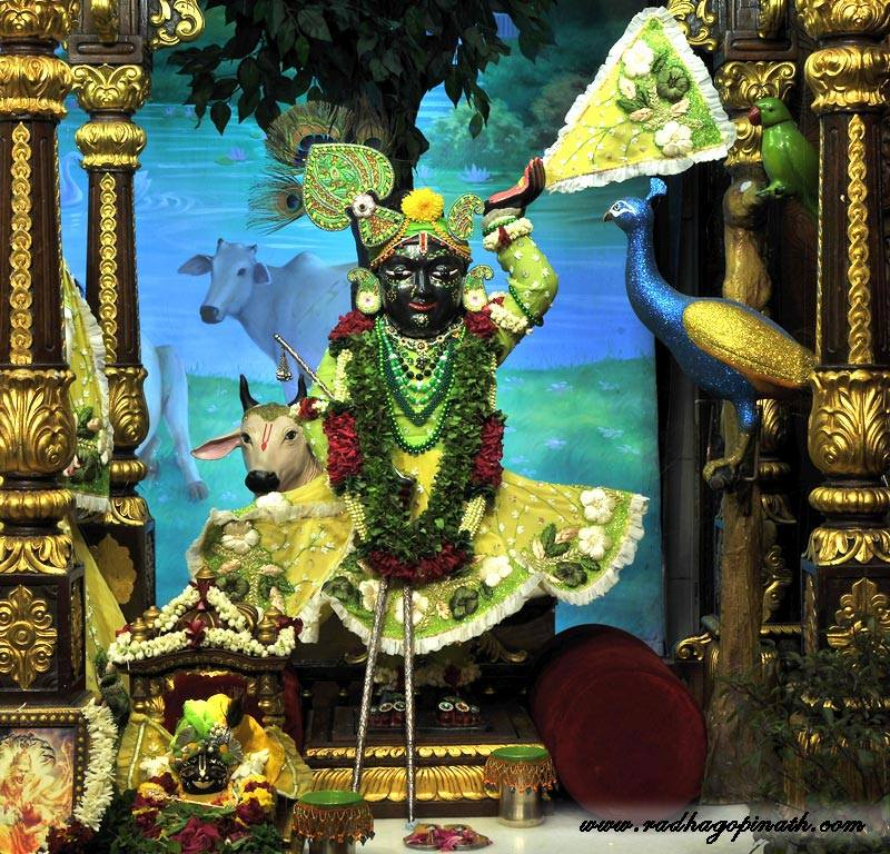 ISKCON Chowpatty Deity Darshan 12 Feb 2016 (6)
