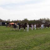 Paardensport 2013