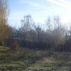 Озеро Круглое Подгоренский район 020.jpg