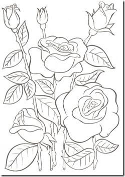 11flores primavera colorear  (44)