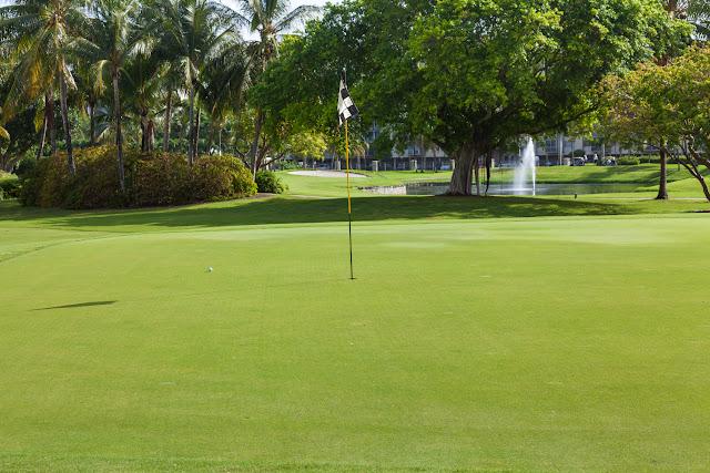 2015 Golf Tournament - 2015%2BLAAIA%2BConvention-1505.jpg