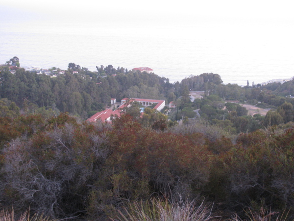 Getty Villa from above