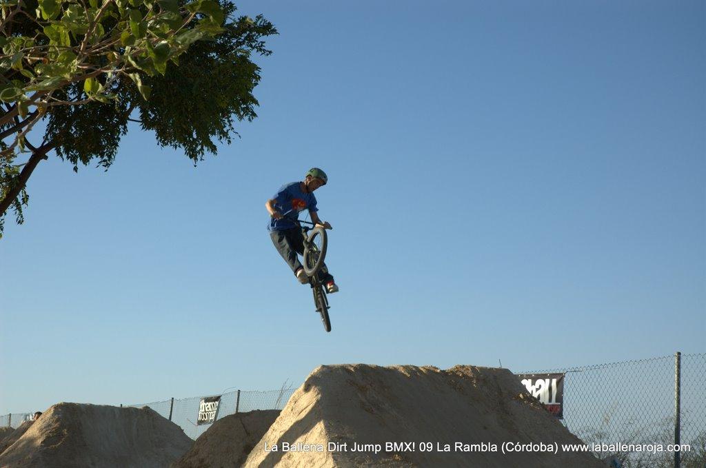 Ballena Dirt Jump BMX 2009 - BMX_09_0098.jpg