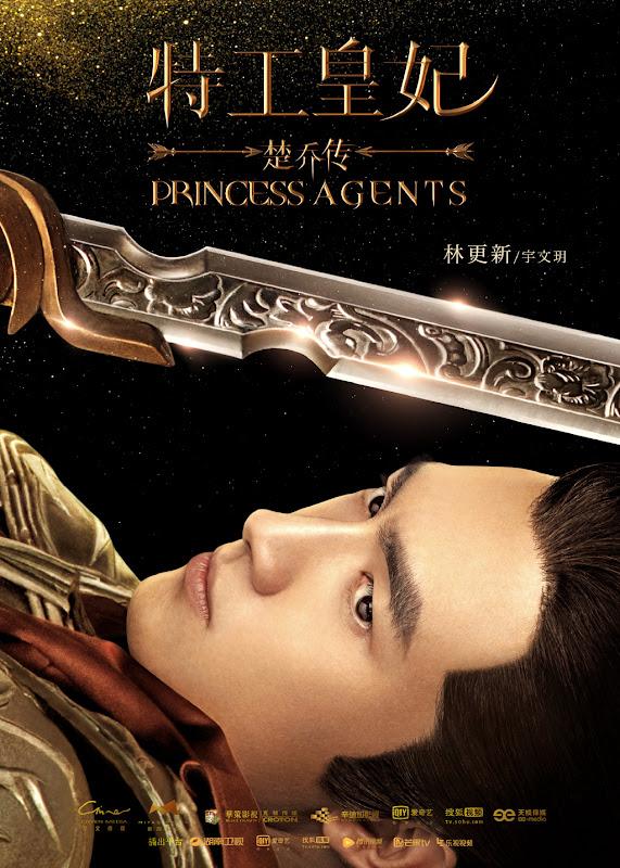 Princess Agents China Drama