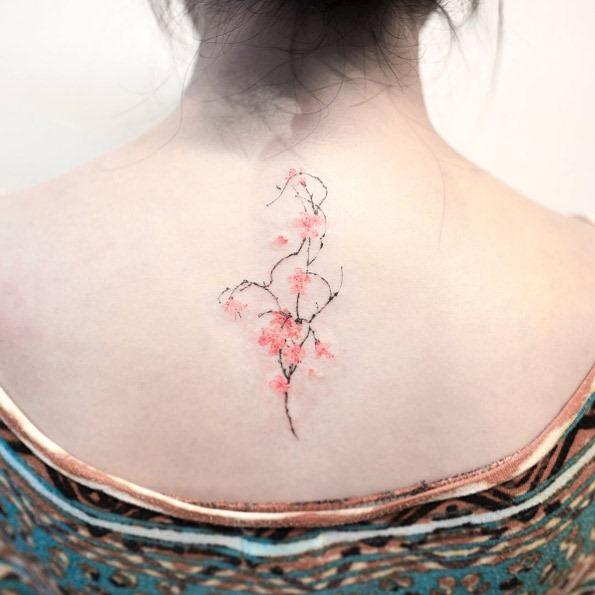 esta_flor_de_cerejeira_costas