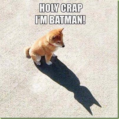 holy-crap-im-batman-quote-1