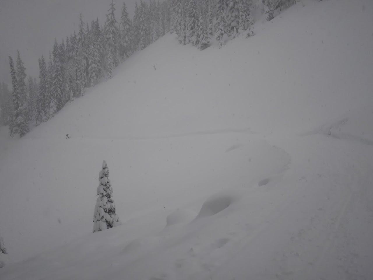 Jan 14 XC Ski - CIMG4769.JPG