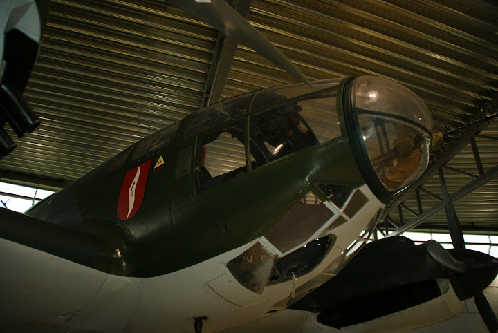 DSC02255.JPG