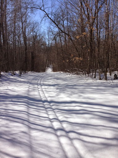 Island lake trail with fresh snow from earlier in the week on top of more recent grooming