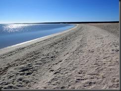 170511 010 Shell Beach