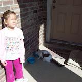 Ghost Cat Cometh - 101_5865.JPG