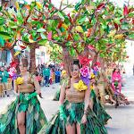 CarnavaldeNavalmoral2015_266.jpg