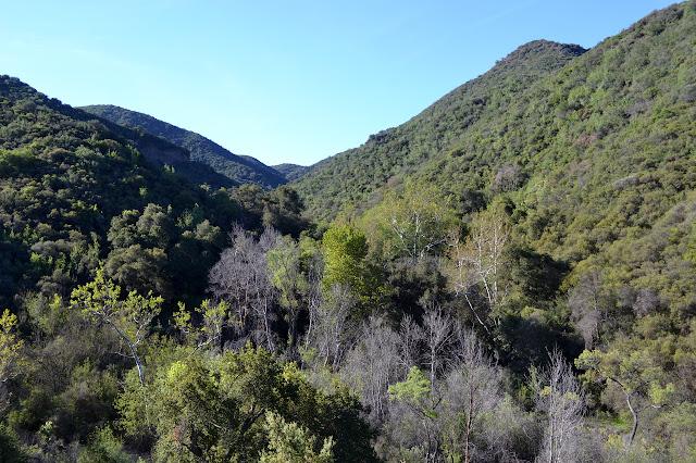 canyon ahead