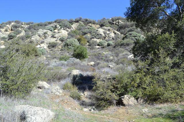 rocky, low ridge