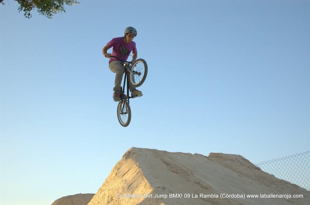 Ballena Dirt Jump BMX 2009 - BMX_09_0130.jpg