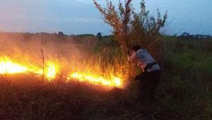 Karhutla, Polisi Serta masyarakat Turut Padamkan Api di Desa Pulau Mentaro