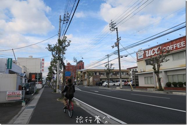 日本四國 中村 四萬十川 (3)