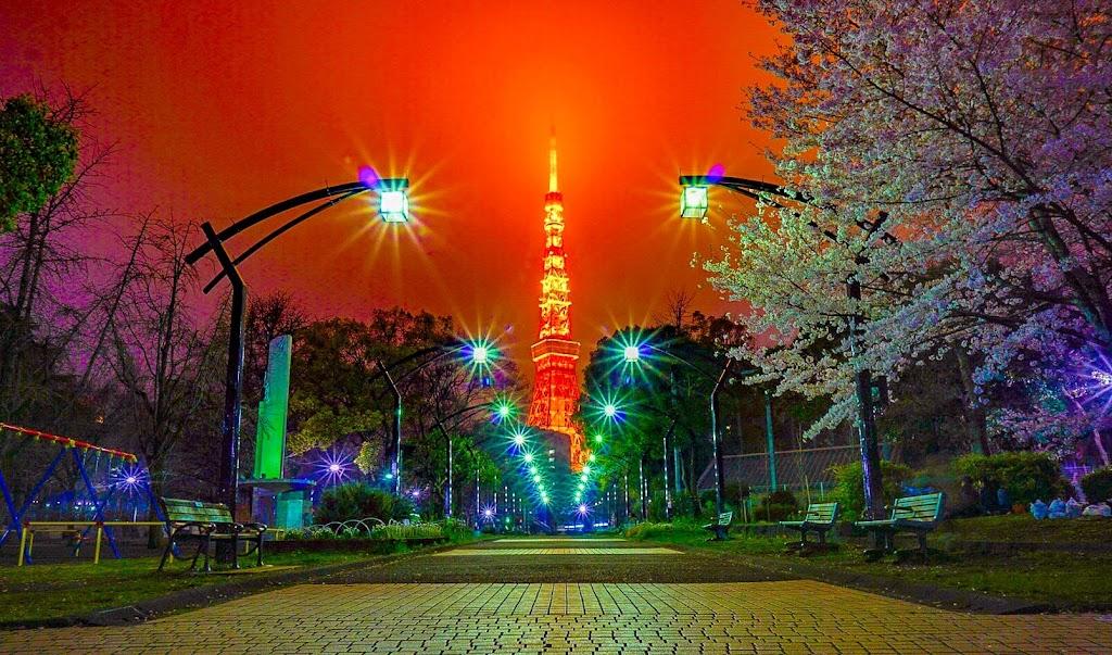 芝公園から撮影した東京タワーの写真