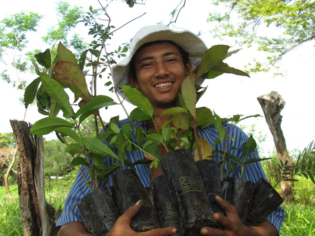 A watershed resident holds trees for reforestation on his farm.