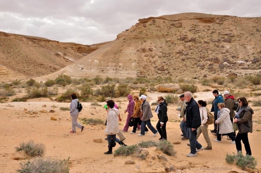 Прогулка по пустыне Негев, Эйн Йоркам. Экскурсия гида Светланы Фиалковой.