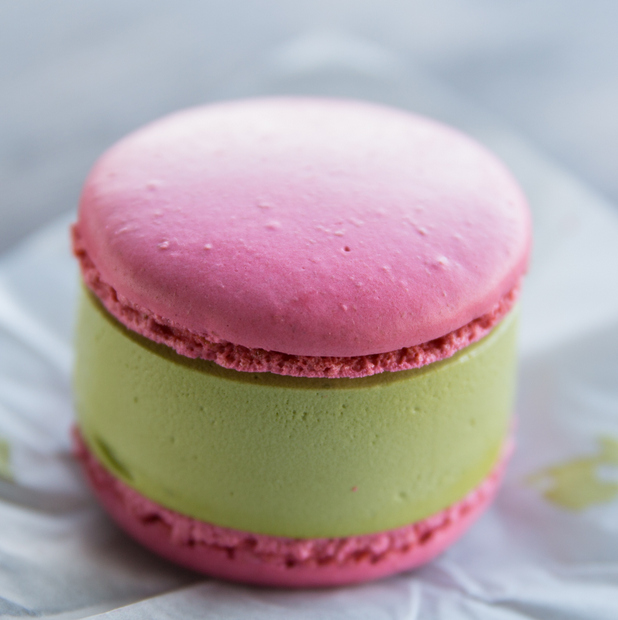 close-up photo of the ice cream sandwich