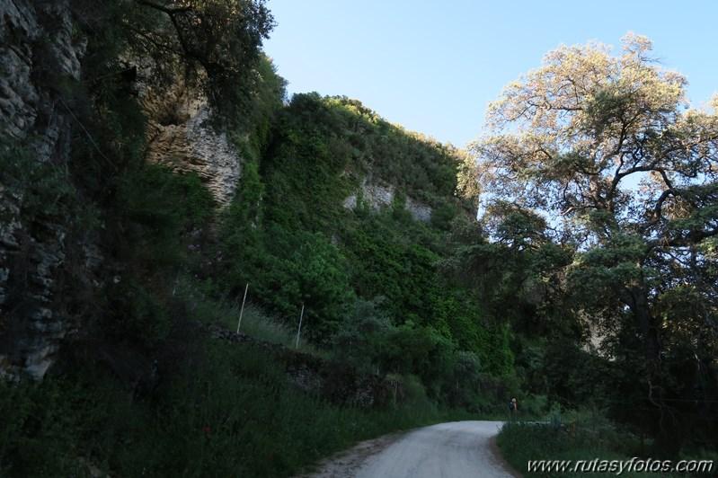 Tajo del Abanico - Encinas Borrachas - rio Audalazar - Alpandeire