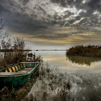 Laguna del delta del fiume Po di aliscaforotto