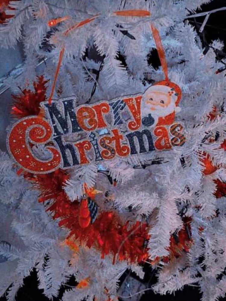 merry Christmas to u ❤