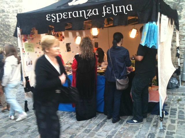 Esperanza Felina en el mercado Medieval de Vitoria  La%252520foto%2525208