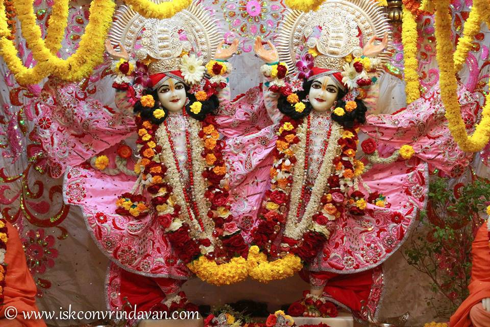 ISKCON Vrindavan Sringar Deity Darshan 06 Jan 2016 (13)