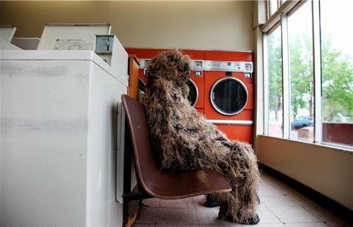 [Image: Laundry.jpg]