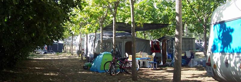 Camping & Bungalow Vinyols Camp