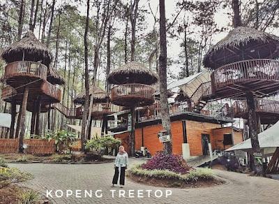 Treetop adventurw kopeng