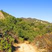 laguna_coast_wilderness_IMG_2227.jpg