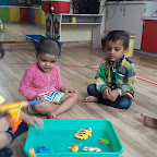 Introduction of Fish (Playgroup) 15.07.2016