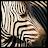 Carol G avatar image