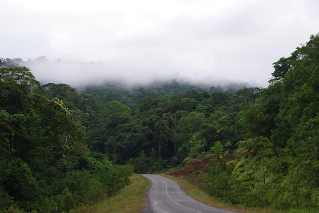 La RN2 près de Cacao, 26 octobre 2012. Photo : J.-M. Gayman