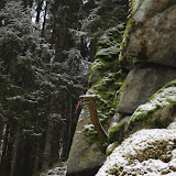 01. Januar 2016: Neujahrswanderung ins Waldnaabtal - IMG_1520.JPG