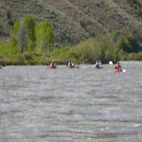 Flotilla of Scouts