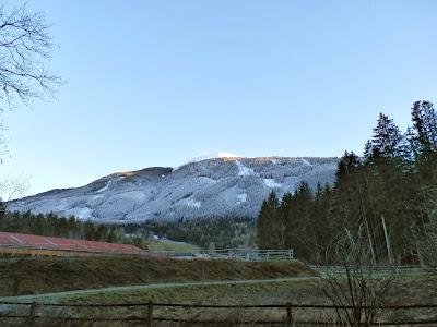 Gut zu sehen die Grenze zwischen Grün und Schnee am Patscherkofel