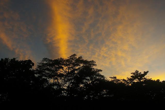 Coucher de soleil au-dessus des Carbets du Bord, Saül (Guyane), 1er décembre 2011. Photo : J.-M. Gayman