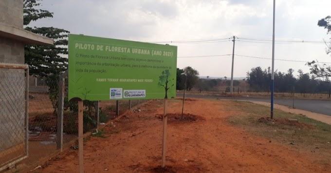 Projeto Floresta Urbana é implantado em Guararapes