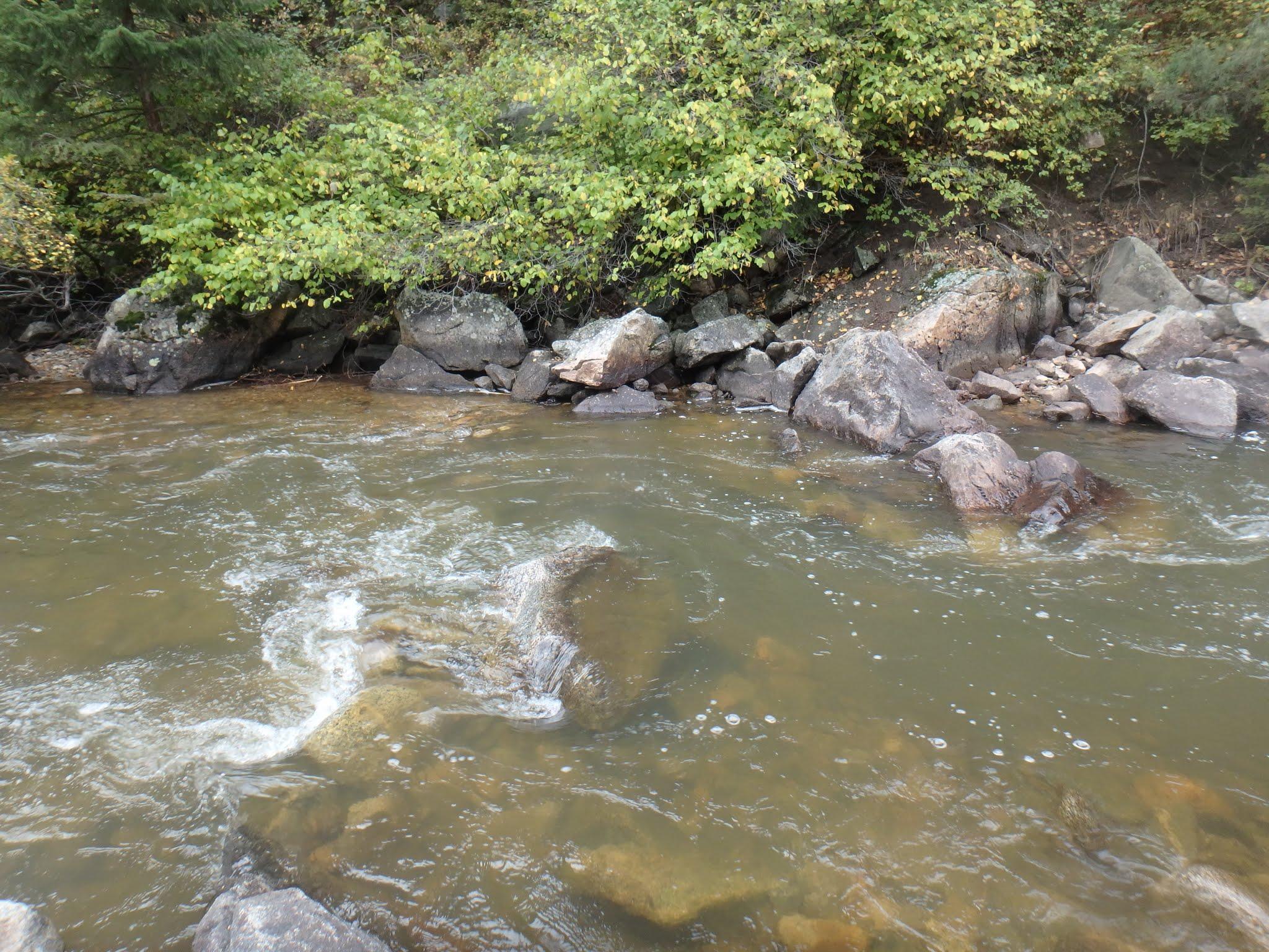 Boulder creek dave weller 39 s fly fishing blog for Boulder creek fishing