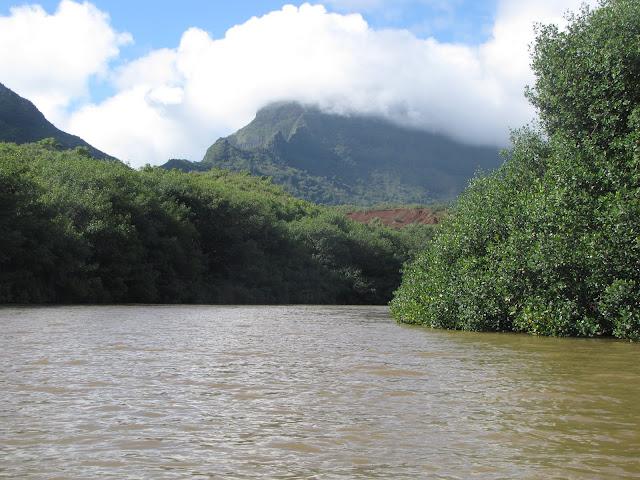 2012 - IMG_9149_Huleia_River_Kayaking.JPG
