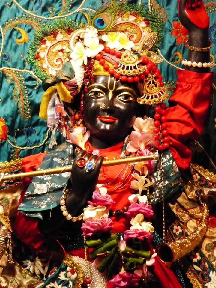ISKCON New Govardhan Deity Darshan 12 Mar 2016 (25)