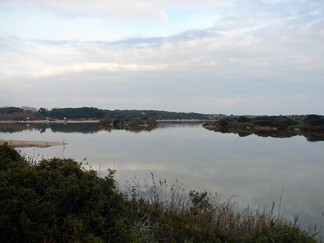 albufera de Valencia Itinerario botánico
