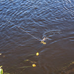 20140627_Fishing_Lysyn_007.jpg